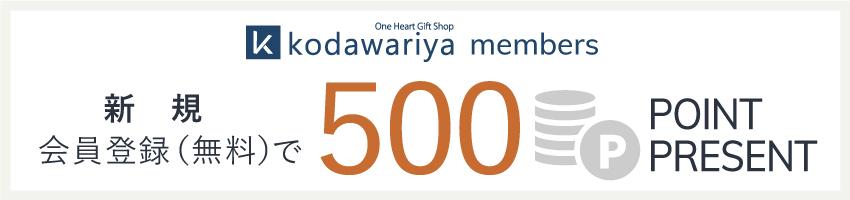新規会員登録500ポイントプレゼント